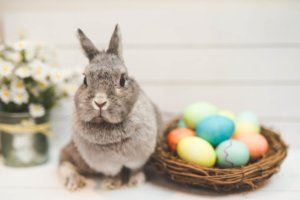 The traditions behind Easter!