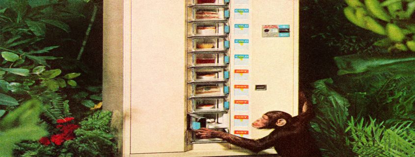 Check out the animals that can use a vending machine!