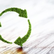 When did our sustainability push start?