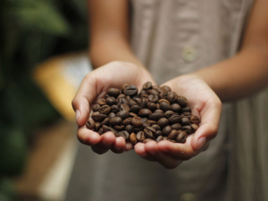 Coinadrink is a proud supporter of Fairtrade.