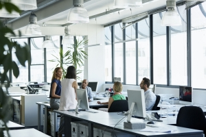 What are you doing to promote employee wellness?